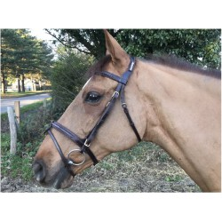 CAVALETTI BRIDON FANCY CARRE